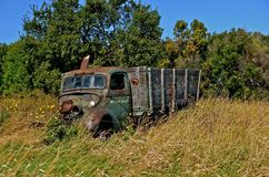 Old Grain Truck in the Weeds. A rickety old grain truck will never haul oats, wheat, or corn  again Royalty Free Stock Images