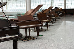 Old Grand Pianos exhibition Royalty Free Stock Images