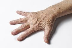 Old grandmother& x27;s hand isolated on a white background. Hand isolated on white background.copy space. Old grandmother& x27;s hand isolated on a white royalty free stock image
