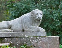 The old granite statue of a lion Stock Images