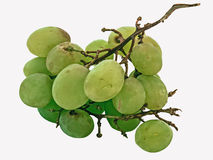 Old Grapes Royalty Free Stock Images