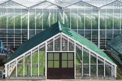 An old grapes greenhouse in front of a modern high one. Royalty Free Stock Photography