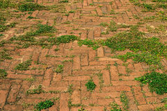 Old grassy brick footpath Royalty Free Stock Photo