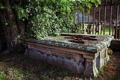 Old grave under a rosebush in a cemetery Stock Image