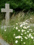 Old grave with wild flowers and cross. Anonymous old grave with cross and wild flowers in foreground Royalty Free Stock Images