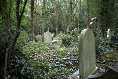 Old graves in an ancient cemetery. With vegetation Stock Photo