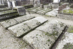 Old graves in a cemetery Stock Image