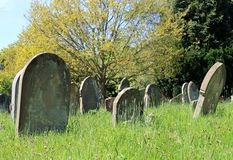 Old graves in cemetery Royalty Free Stock Images