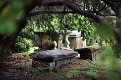 Old graves Royalty Free Stock Photo