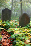 Old Gravestone Stock Image
