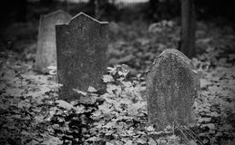 An old gravestone in the cemetery Stock Photography