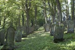 Old gravestone rows Royalty Free Stock Photos