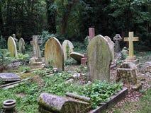 Old gravestones. Cemetery with mainly simple limestone gravestones Royalty Free Stock Photos