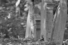 Old gravestones - detail. Old gravestones in an old cemetery. Photographed in Slovakia stock photography