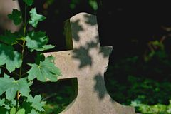 Old gravestones - detail. Old gravestones in an old cemetery. Photographed in Slovakia royalty free stock photo