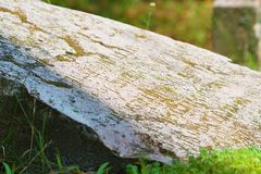 Old gravestones - detail. Old gravestones in an old cemetery. Photographed in Slovakia royalty free stock photos