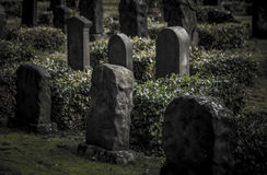 The old gravestones. Shot in Denmark Royalty Free Stock Photography