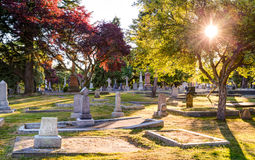 Old gravestones at sunset, Ross Bay Cemetery, Victoia, BC Royalty Free Stock Photography