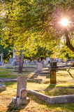 Old gravestones at sunset, Ross Bay Cemetery, Victoria, BC Royalty Free Stock Photography
