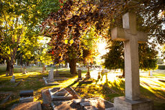 Old gravestones at sunset, Ross Bay Cemetery, Victoria, BC Royalty Free Stock Photo