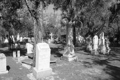 Old graveyard stock photography