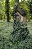 Old graveyard. An old grave overgrown with ivy royalty free stock images