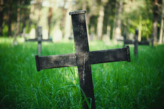 Old Graveyard in Park. Details of an old Christian graveyard in park, during spring Royalty Free Stock Image