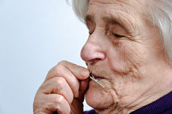 Old gray-haired woman Stock Images
