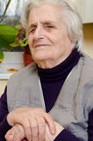 Old gray-haired woman Stock Image