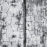 Old_gray_paint_on_boards illustration stock