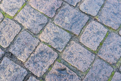 Old gray pavement Stock Photography