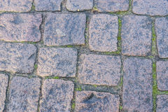 Old gray pavement Stock Image