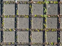 Old gray pavement Royalty Free Stock Photo