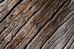 Old gray rotten wooden board with deep cracks and wavy grooves. Texture - old gray rotten wooden board with deep cracks and wavy grooves. Horizontal photo Royalty Free Stock Image