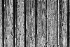 Old gray wood background Stock Images