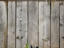 Old gray wooden fence from parallel boards royalty free stock image