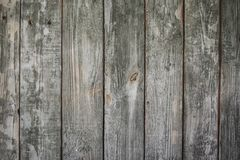 Old gray wooden wall, background photo texture stock photos