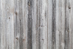 Old gray wooden wall background texture Royalty Free Stock Images