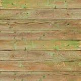 Old greeen wood plank background. Closeup Stock Photos