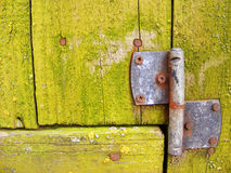 Old green background with rusty hinge. Old green wooden background with rusty hinge Royalty Free Stock Photo