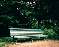 Old green bench. In a park royalty free stock photography