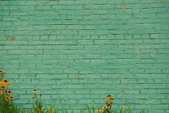 Old green brick wall and decorative flowers