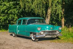 Free Old Green Cadillac In A Forest Stock Photography - 119861472
