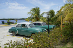Old green cars, Cuba Stock Images
