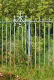An old green cast iron gate and fence. Royalty Free Stock Image