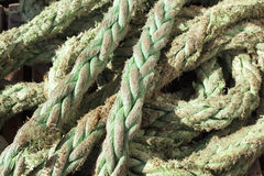 old and green colour ship rope green ship rope Royalty Free Stock Image