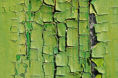 Old Green Cracked Paint on Wood Close Up. Abstract Texture Backg. Old Green Cracked Paint on Wood Close Up. Abstract Background Stock Photography
