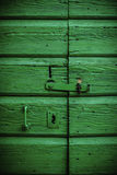 Old Green Door in Dalmatia Stock Image