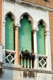 Old green lancet Venetian window,Italy Stock Image