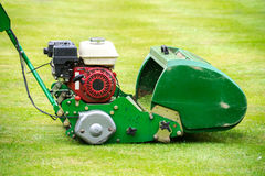 Old green motor mower cutting lawn Royalty Free Stock Photography